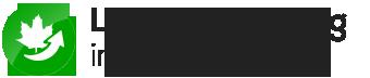 Laubbeseitigung Ratingen | Gelford GmbH